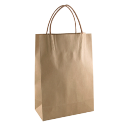 Kraft Junior Paper Bag - Brown