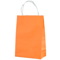 Kraft Junior Paper Bag - Citrus Orrange