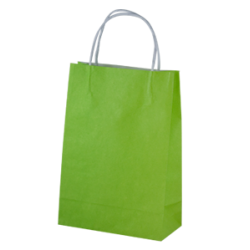 Kraft Junior Paper Bag - Loud Lime