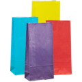 Carnival Gift Bags