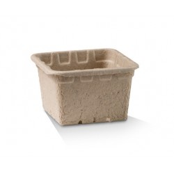 Compostable Punnet Small