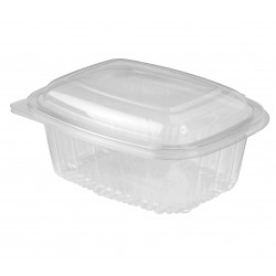 Plastic Container Rectangle - Hinged Lid 1000ml