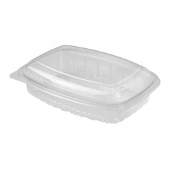 Plastic Container Rectangle - Hinged Lid 600ml
